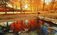 New England - Fall - bridge