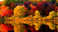 New England - Fall - colours