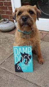 Dougal & book