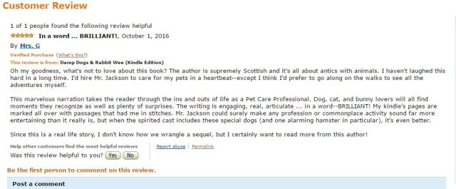 amazon-us-review-brilliant